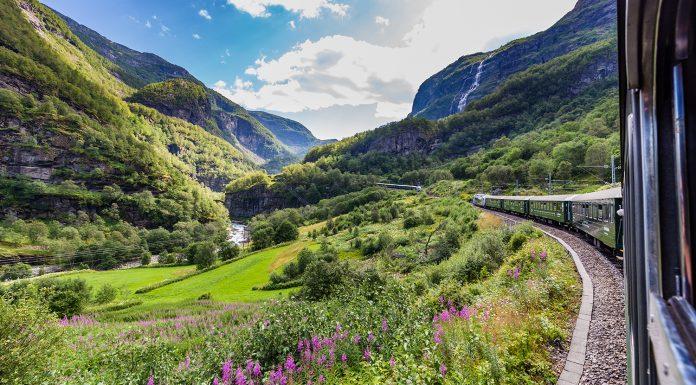 Tog kjører gjennom landskap